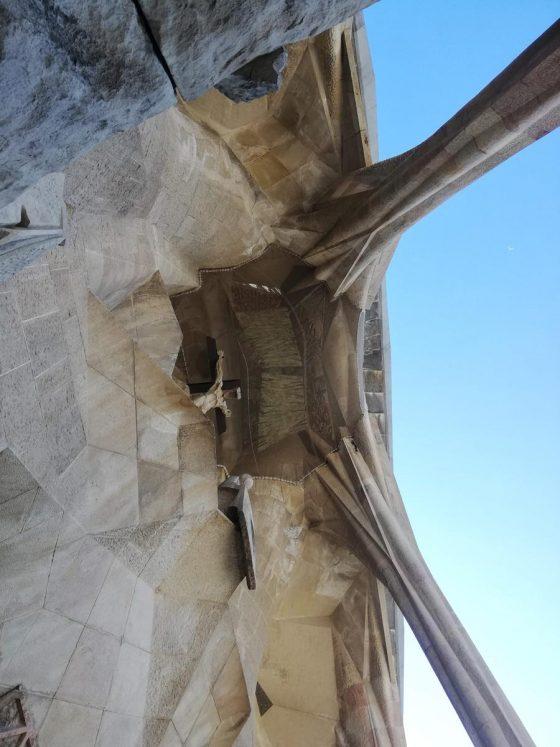 Imatge 4 de Servei d'Arqueologia