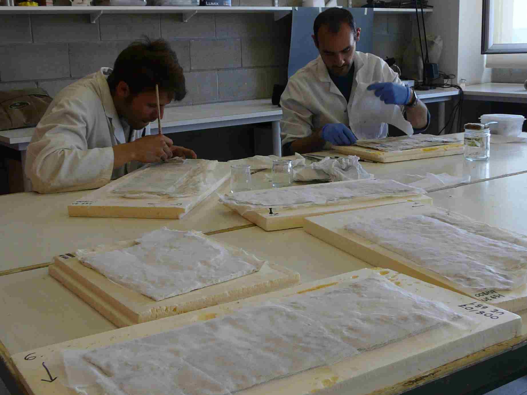 Consolidació del revers i reposició de llacunes (Foto Servei d'Arqueologia)