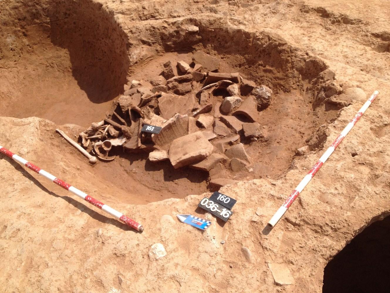 Sitja romana (S. III dC) amb material ceràmic i una inhumació al seu interior. Foto: Joan Piera