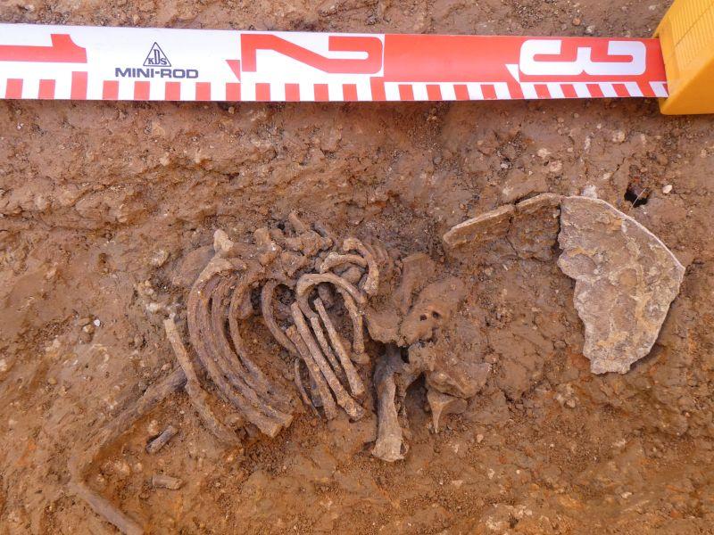 Detall enterrament infantil del segle XIII