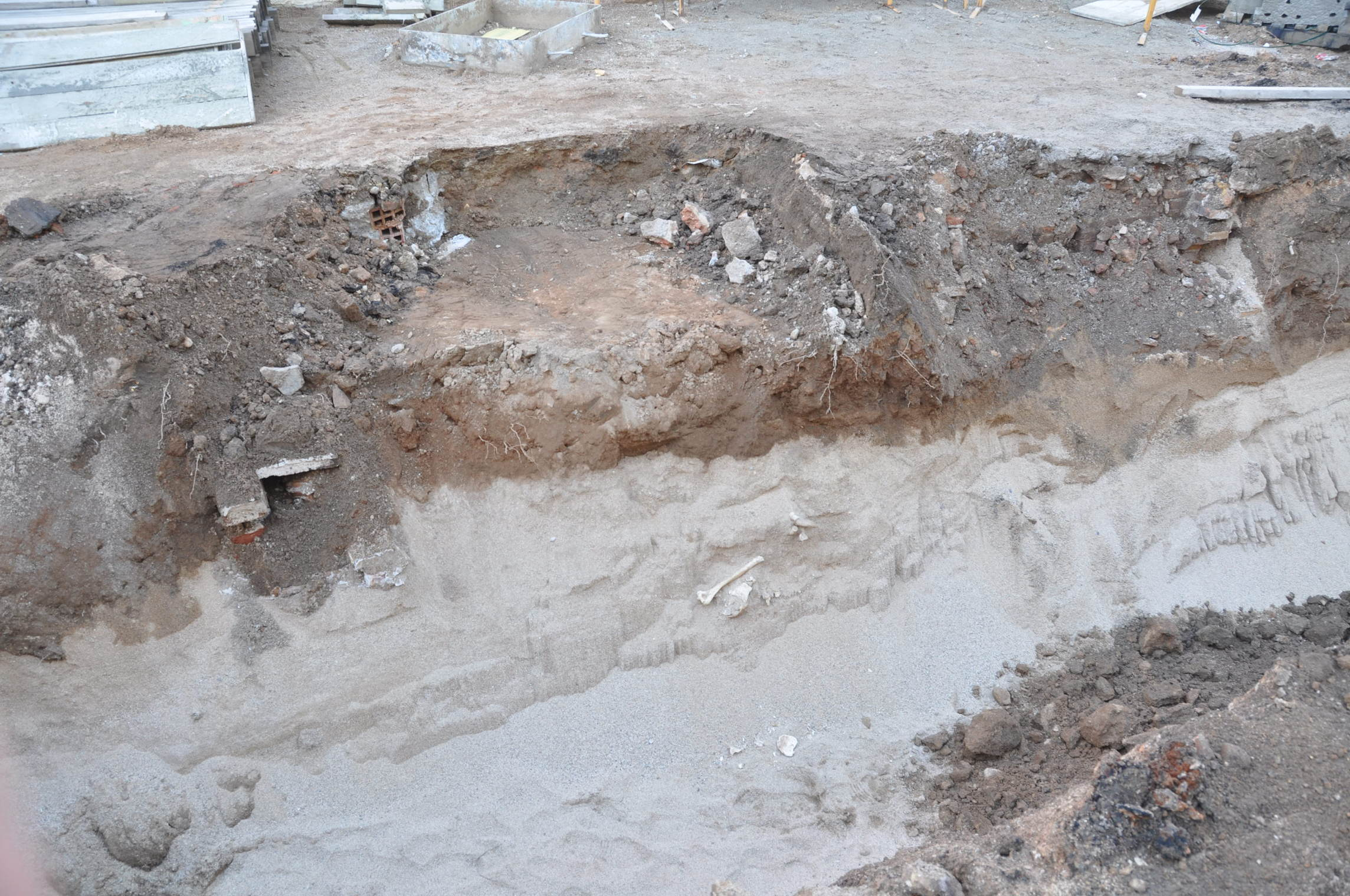Estrat de sorra on s'han localitzat les restes òssies. Foto: Esteve Nadal
