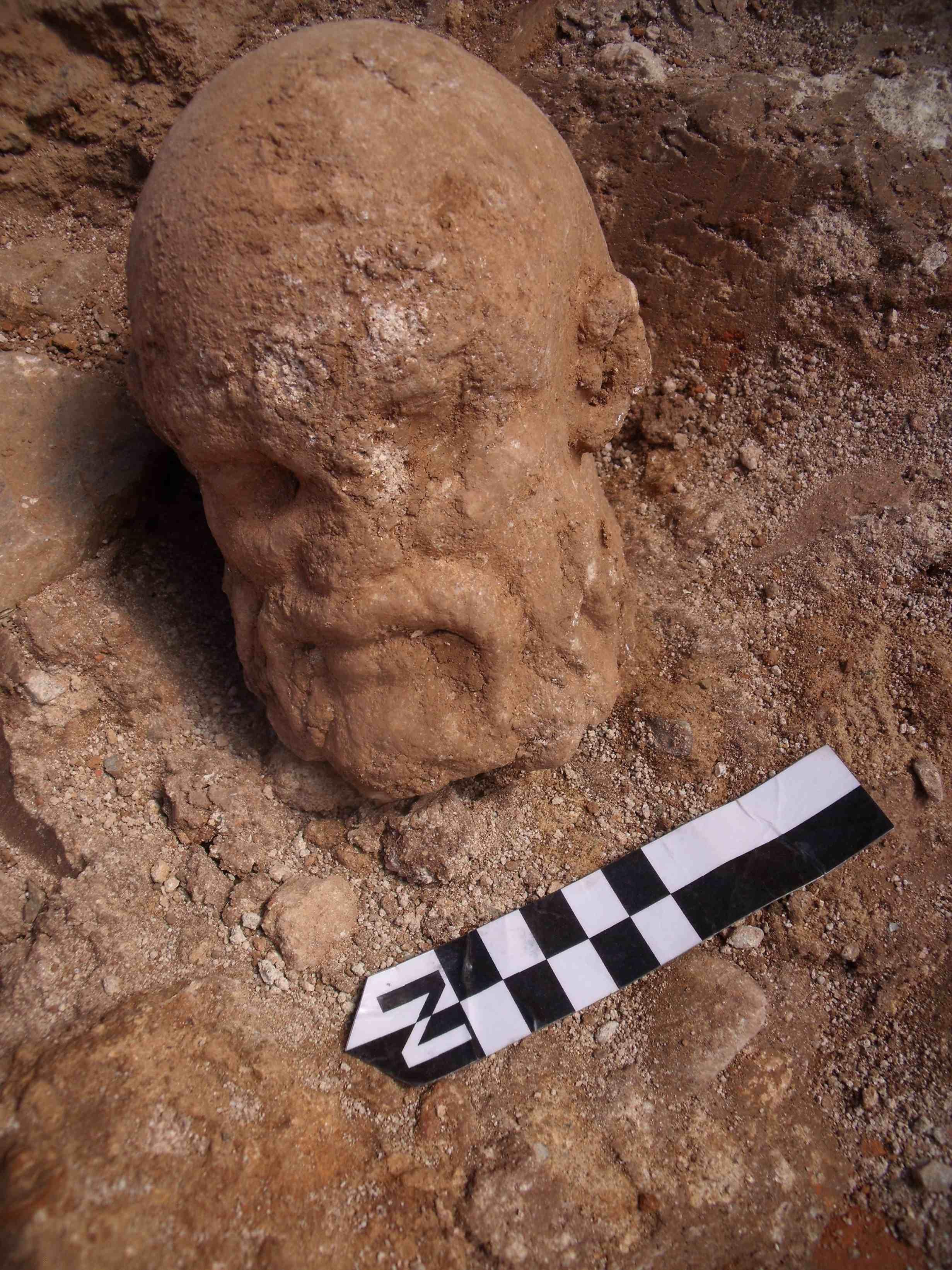 Detall del cap en el lloc de la troballa (Foto: Jordi Ardiaca, CODEX)