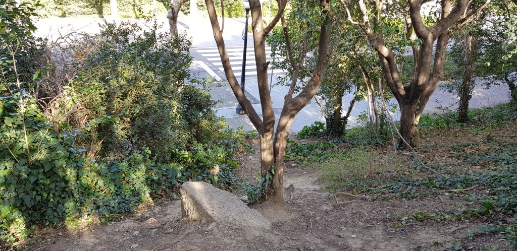 Situació de la làpida a tocar de l'avinguda de Miramar. Foto: SABCN
