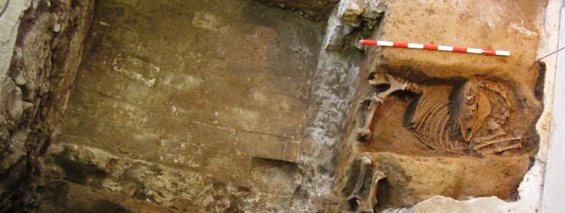 veure La Rambla del Raval, 39: dues fosses medievals d'inhumació d'èquids>