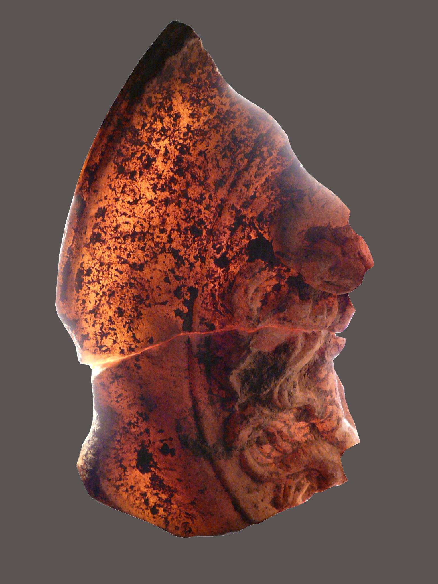 Detall del cap de medusa, amb l'efecte de llum