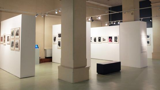 Foto en color. Es veu la sala d exposicions de l Arxiu