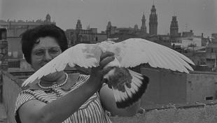 Foto en blanc i negre. Retrat de Felisa al terrat agafant un colom amb les ales esteses