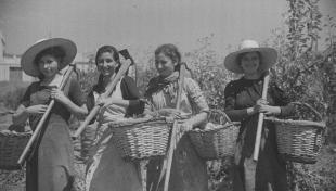 Foto en blanc i negre. Es veuen 4 treballadores del camp amb cistells i aixades