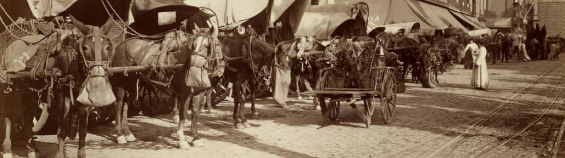 Foto en blanc i negre. Es veuen carruatges amb cavalls davant mercat de la Boqueria a la Rambla