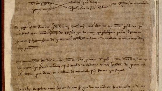 Llibre d'actes de les reunions del Consell de Cent i del Consell de Trenta (1310-1313): inclou l'elecció de càrrecs municipals i les deliberacions dels Consells. També conté còpies de la correspondència tramesa i rebuda, així com ordinacions, documentació comptable i declaracions de ciutadania