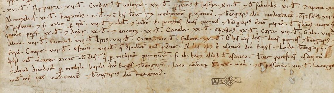 Detall d'un pergamí municipal de 1160