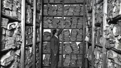 Fotografia en blanc i negre que mostra prestatges plens de volums de documents antics amb una figura amb bata gris al mig que assenyala un dels volums.
