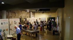Una sala plena de gent que observa les vitrines i els plafons que formen part d'una exposició.