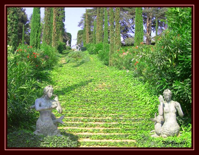 Visita a los jardines santa clotilde associaci consell for Jardines de santa clotilde