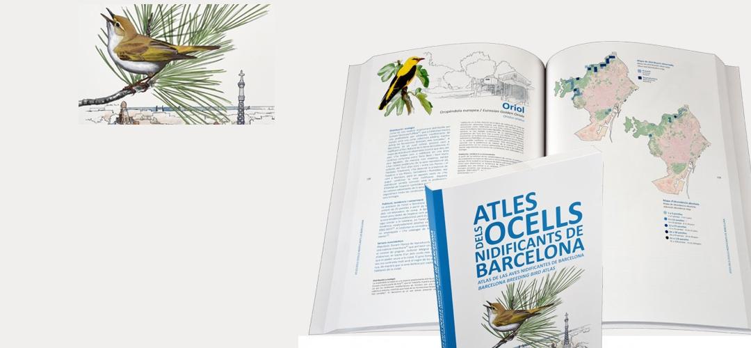 Imatge de la coberta i pàgines interiors del Atles dels ocells de Barcelona