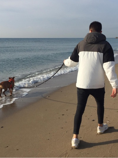 El gos Chicho i el seu amo passejant per la platja