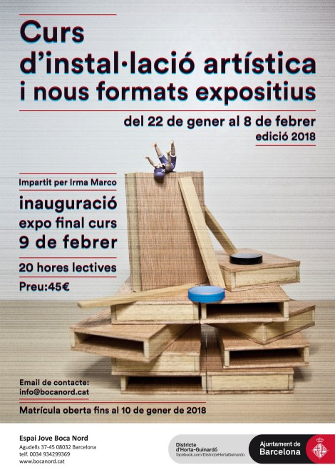 cartell-curs-inst-web-2018