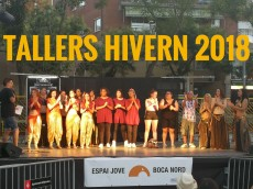 tallers hivern 2018