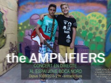 the amplifiers