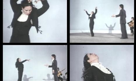 dijoos flamenc