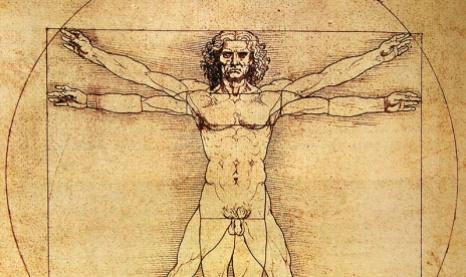 els cos humà