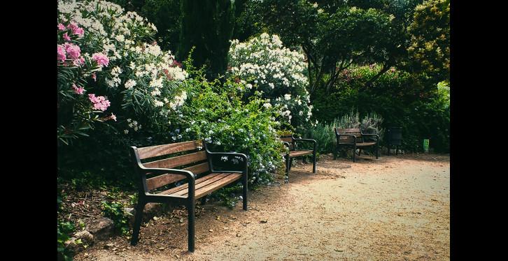 Rincón de lectura: Parque de Monterols