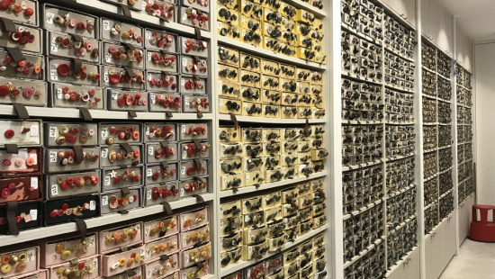 Calaixeres amb diferents models de botons a la merceria Santa Ana del carrer de les Moles