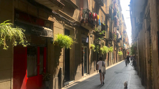 Carretes Street in Raval, with plants at buildings façades