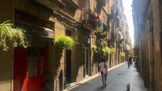El carrer Carretes del Raval amb les plantes a les façanes dels edificis