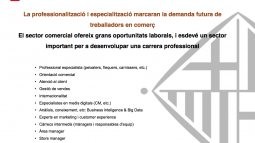 Professional opportunities in the retail sector