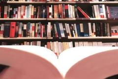 llibreriasanchez_02