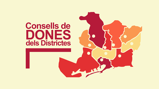 imatge consell dones districte