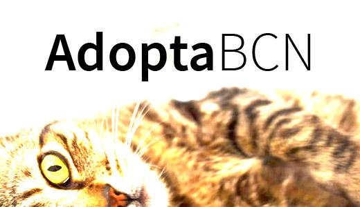 Banner AdoptaBCN