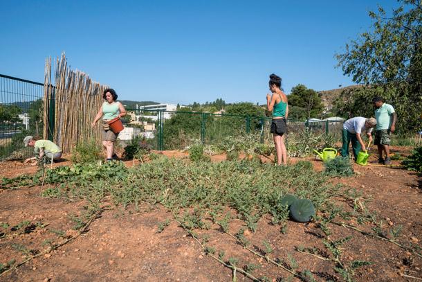 Pla BUITS - Horta amb Gràcia
