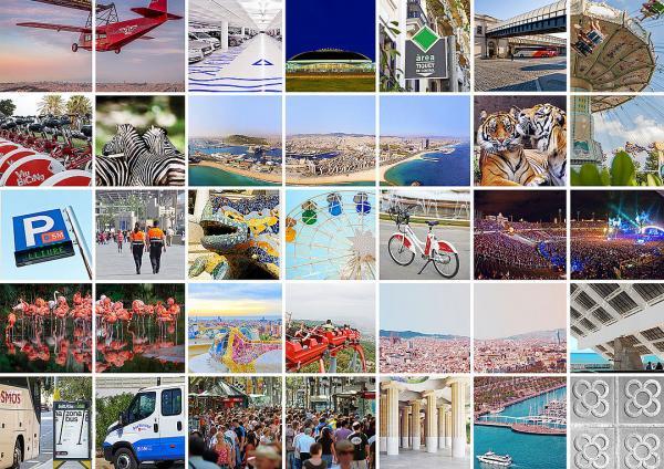 Collage d'imatges sobre els serveis que ofereix BSM