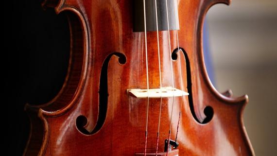 Concert de viola
