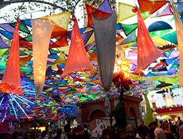 Baner Festa i tradició