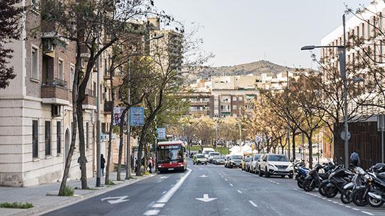 Imatge de l'avinguda dels Quinze