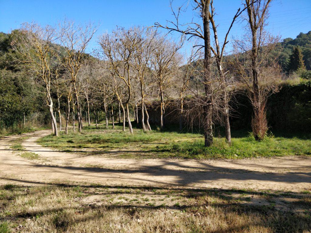 Can Girona Terreny petit