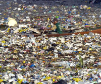 There is an island of plastics in the middle of the Pacific