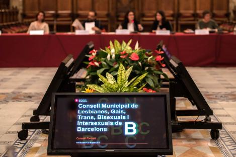 Fotografia d'una sessió del Consell Municipal LGTBI 1