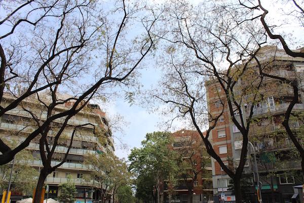 barri de Navas
