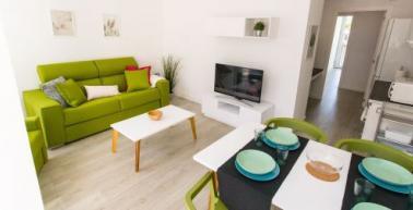 Servei de millora i manteniment de la llar