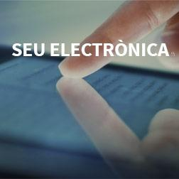Municipal electronic services