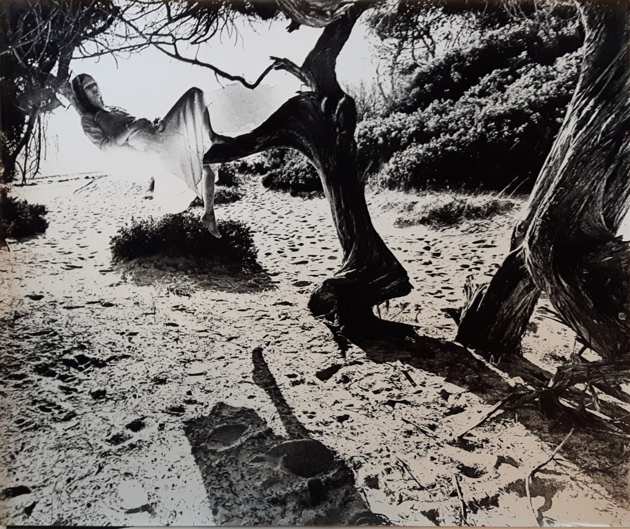 Tony Keeler. 'Dreams on a Sabine tree', de la sèrie <<Ibiza a dream...?>>, ca. 1973