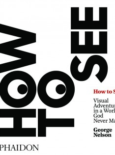 How to see : visual adventures in a world God never made
